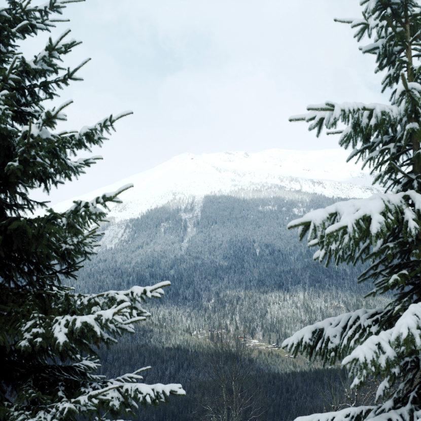 Canadá desde el tren en invierno: casi una postal navideña