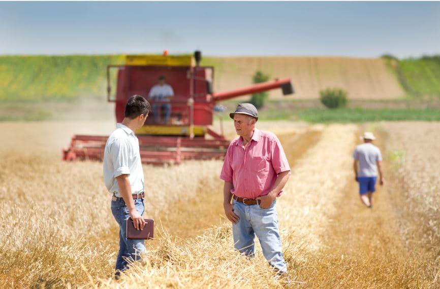 Trabajador agricola mexicano en los campos canadienses