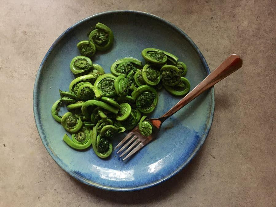 El plato típico de Canadá: los fiddleheads