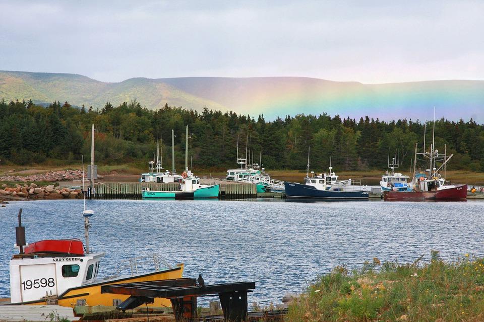 Lo que no puedes dejar de hacer en el Parque Nacional Cape Breton Highlands